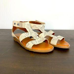 Franco Sarto flat snakeskin gladiator sandals